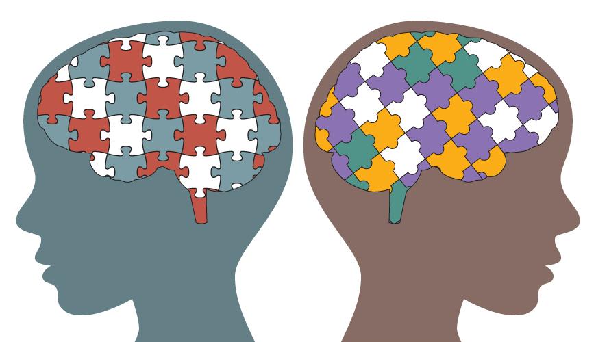 Los cerebros de niños con autismo se pliegan de diferentes maneras que el de los demás