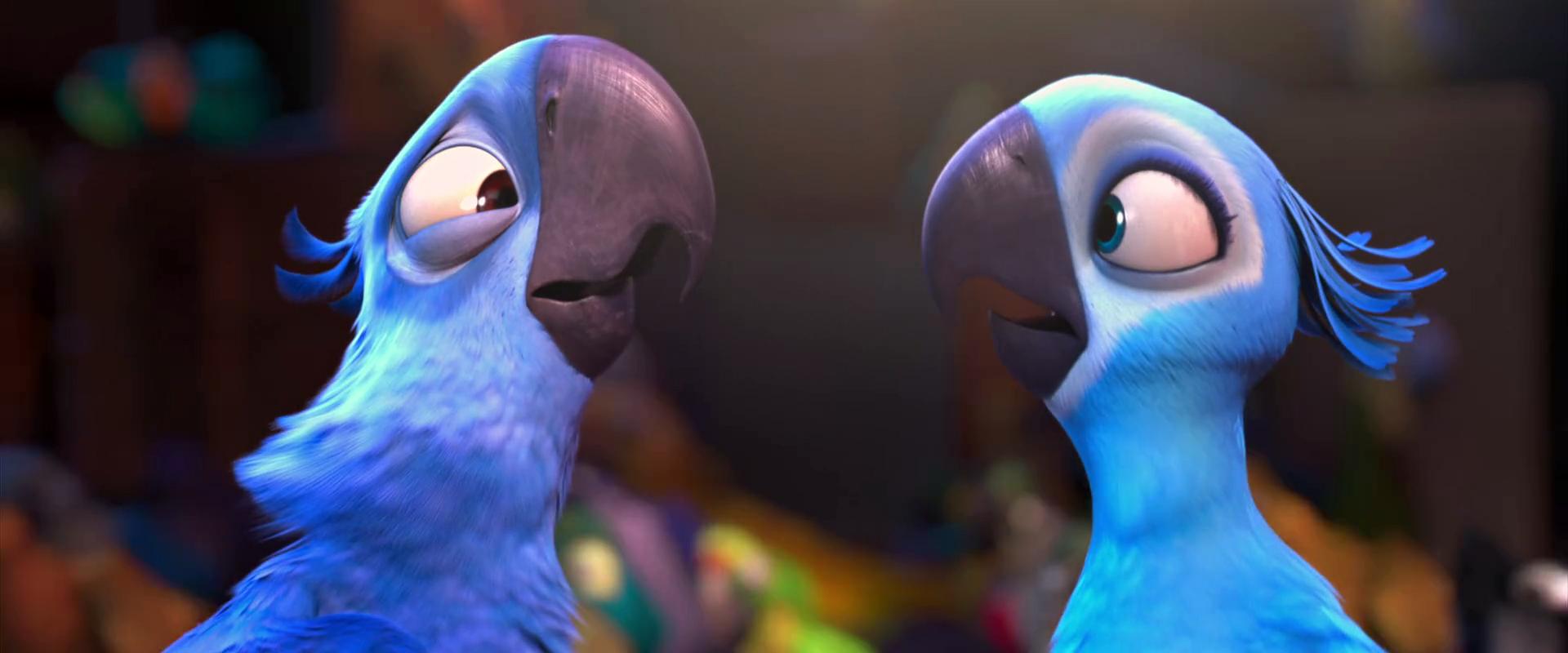 El guacamayo azul que inspiró la película «Río» está oficialmente extinto en la naturaleza