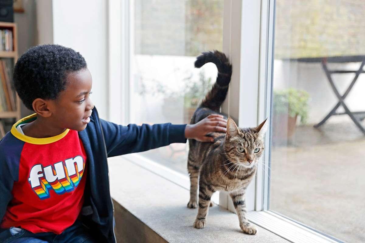 Cuanto más contacto tengas con mascotas desde pequeño, menor será tu riesgo de contraer alergias