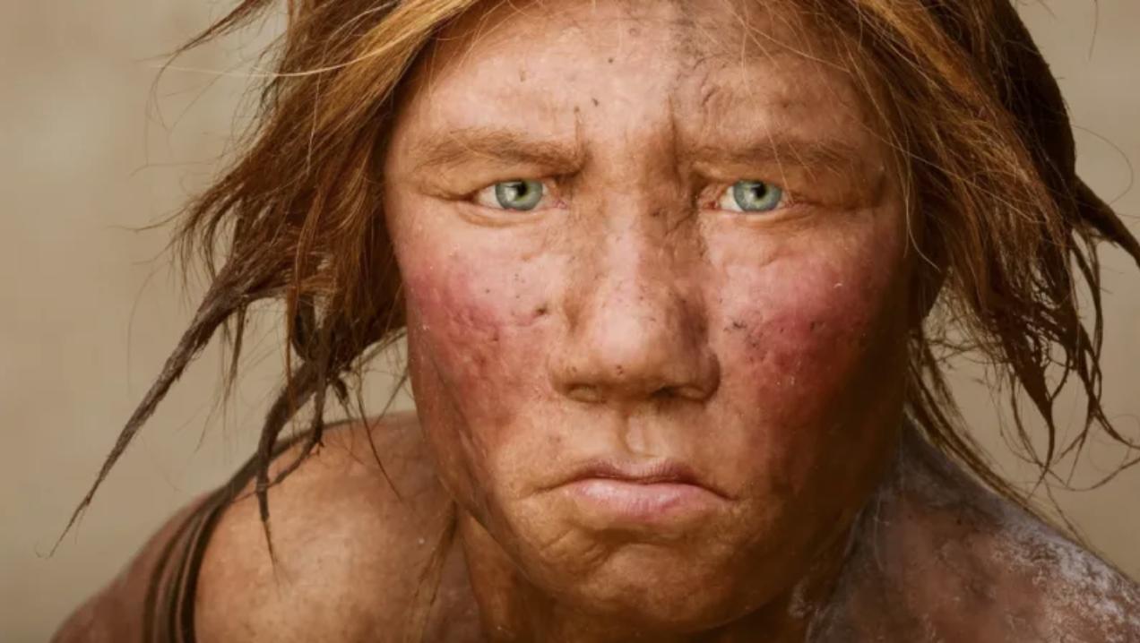 Nuevo estudio sugiere que los neandertales eran velocistas en lugar de corredores de distancia