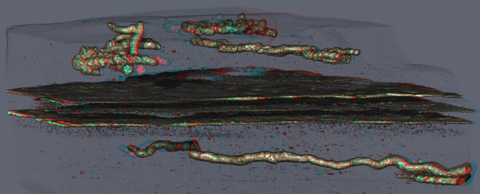 Este fósil de 2.1 mil millones de años de antigüedad puede ser evidencia de la forma de vida móvil más antigua