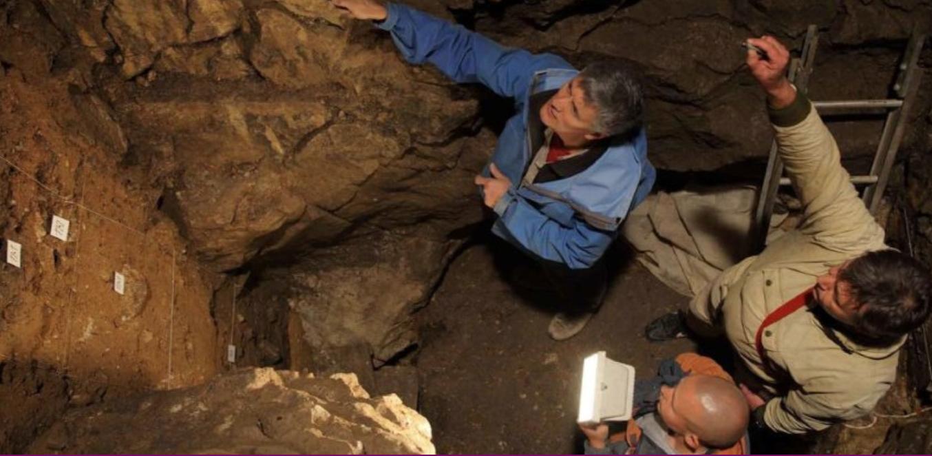 El primer fósil conocido de un cráneo de denisovano fue encontrado en una cueva siberiana