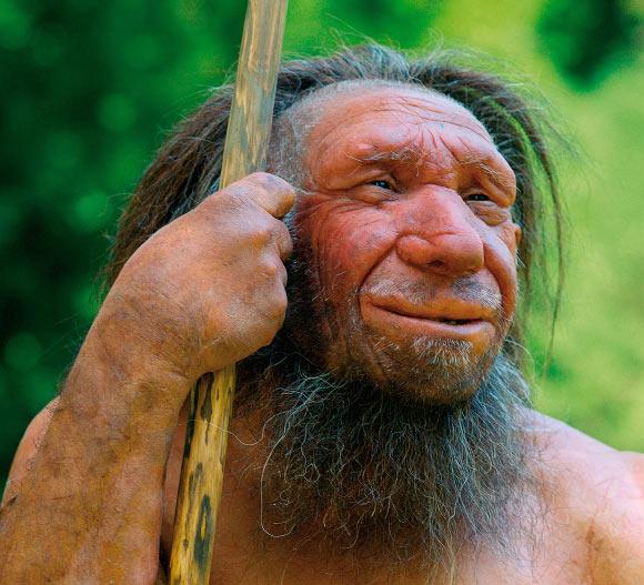 Los neandertales caminaron erguidos al igual que los humanos de hoy