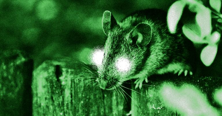 Nanopartículas han dado visión nocturna a ratones