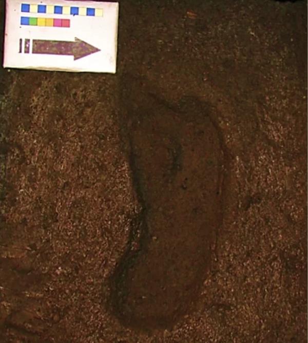 Científicos sugieren que huella humana encontrada en Chile es la más antigua en América