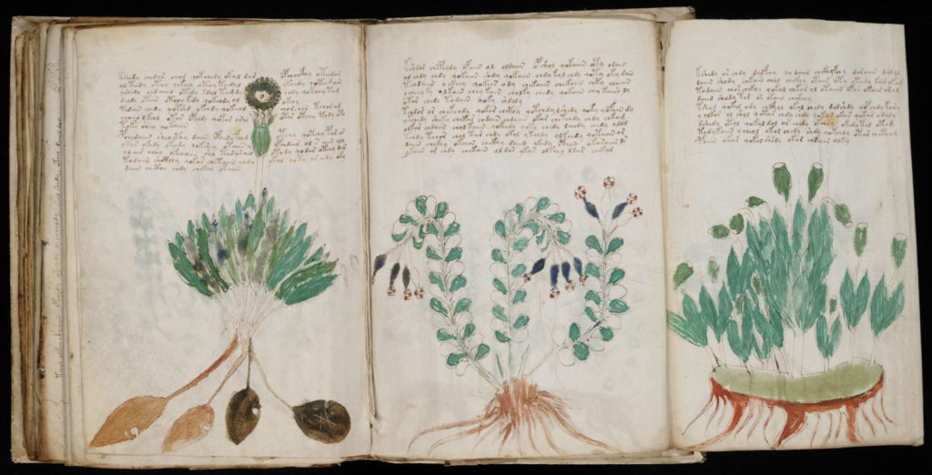 Académico afirma haber descifrado el Manuscrito Voynich