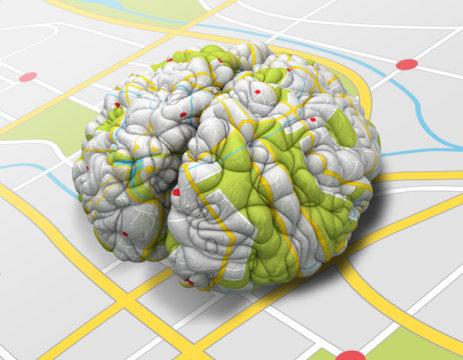 Neuronas específicas que mapean los recuerdos han sido identificadas en el cerebro humano