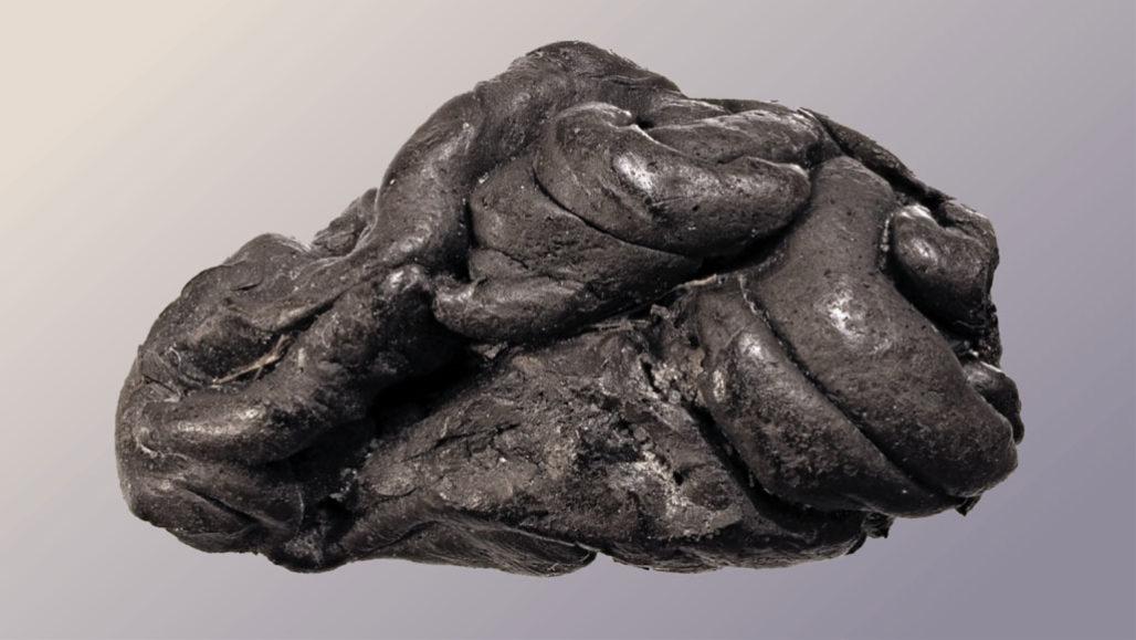 ADN de una «goma» de 5 700 años muestra cómo podría haber sido una mujer antigua