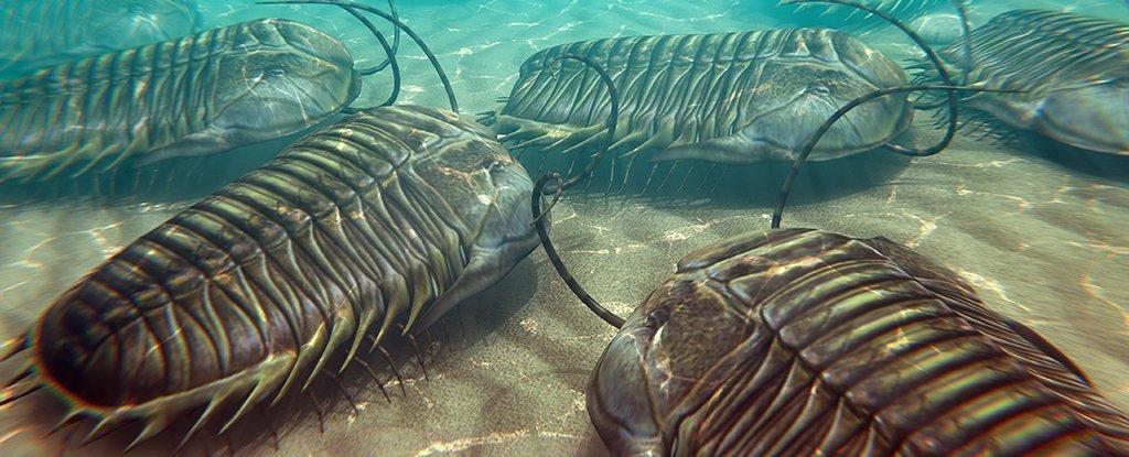 Los animales terrestres comenzaron a morir mucho antes que la vida marina en la mayor extinción que hubo en la Tierra