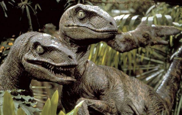 'Jurassic Park' parece equivocarse otra vez: los velociraptores no cazaban en grupos