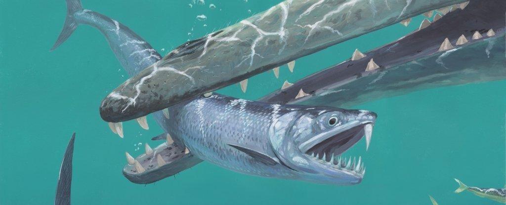 Científicos descubren que enormes anchovetas diente de sable poblaron los mares hace 55 millones de años