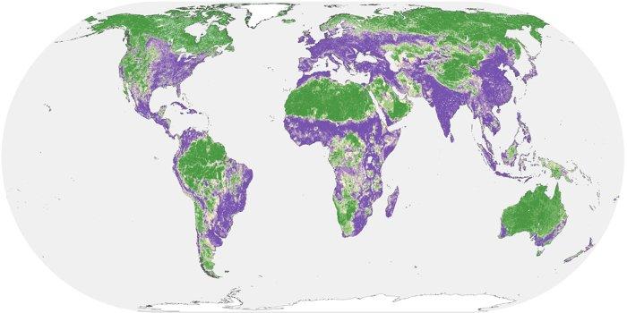 Un estudio revela cuánto de la Tierra aún está libre del daño humano