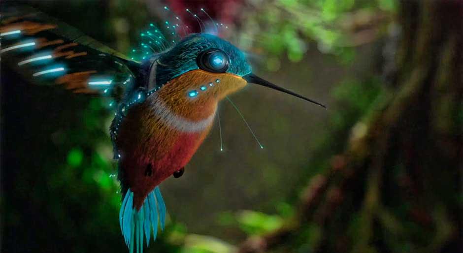 Los colibríes perciben colores que los humanos ni siquiera pueden imaginar