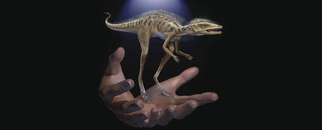 Científicos descubren en Madagascar el fósil de un animal extremadamente pequeño que podría ser el ancestro de los dinosaurios