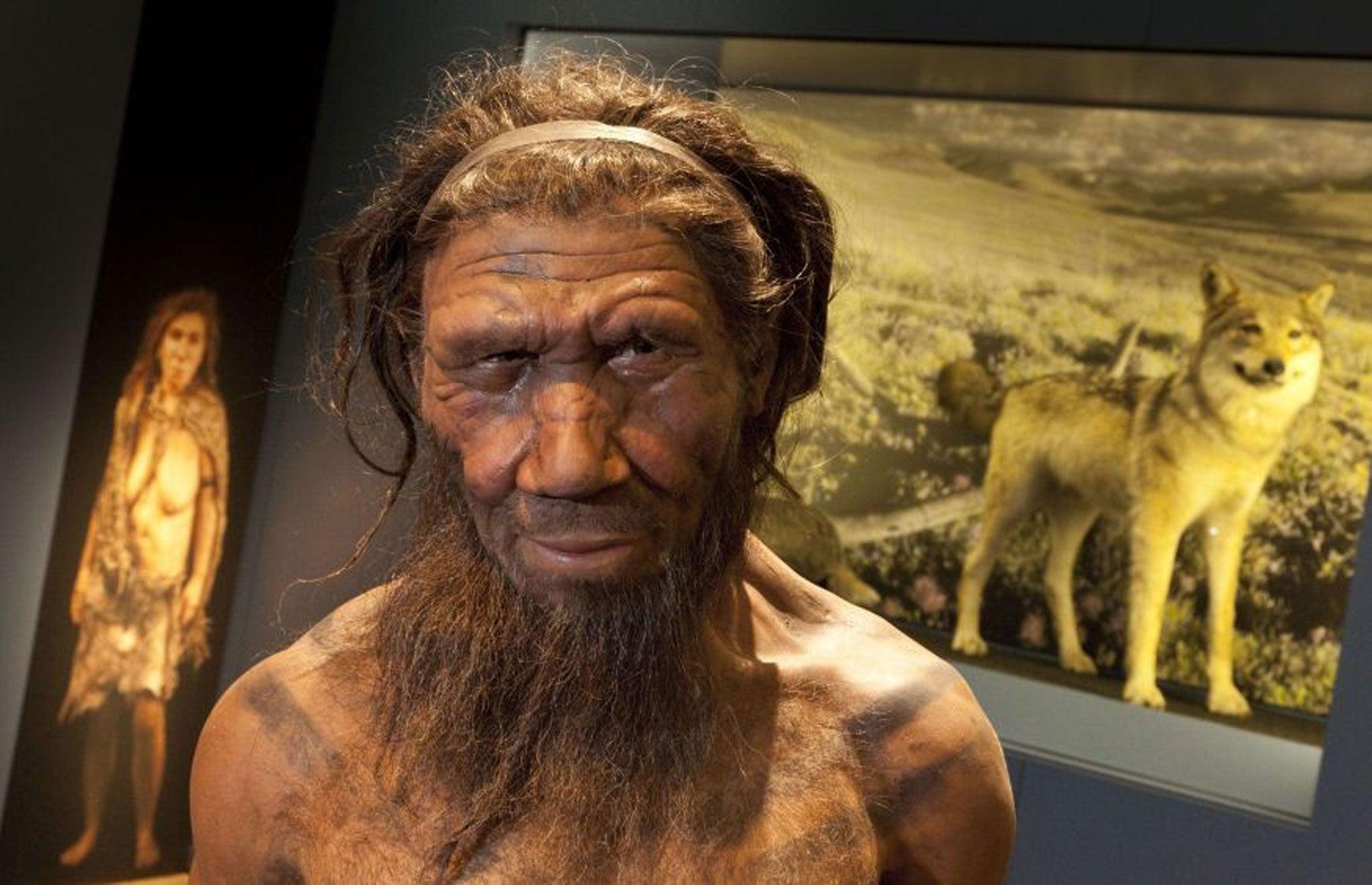 Los neandertales pueden haber tenido un umbral más bajo para el dolor