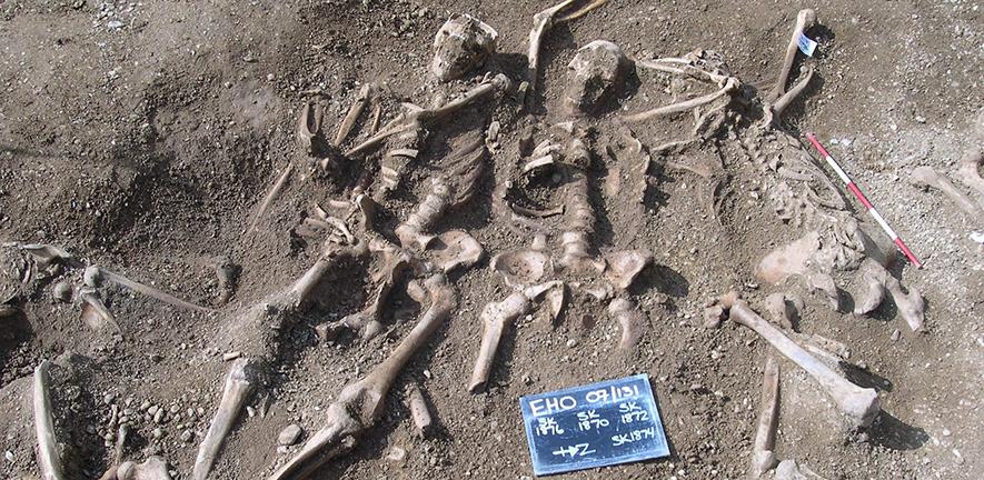 Se encontró rastros de viruela en ADN de vikingos