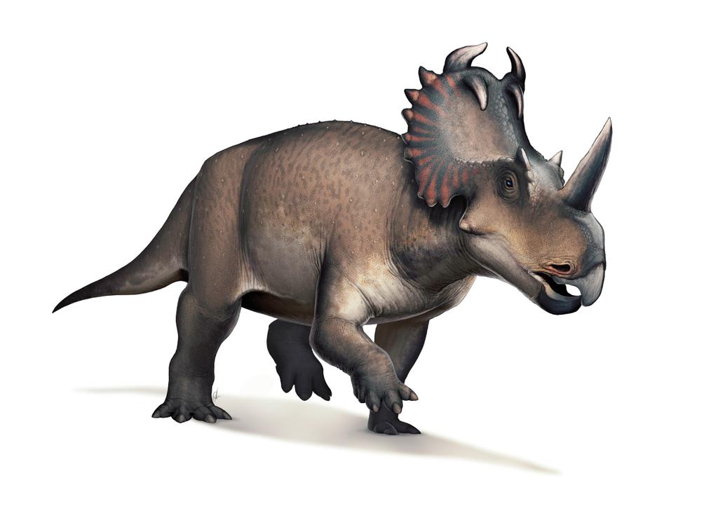 Científicos detectan por primera vez cáncer en un dinosaurio