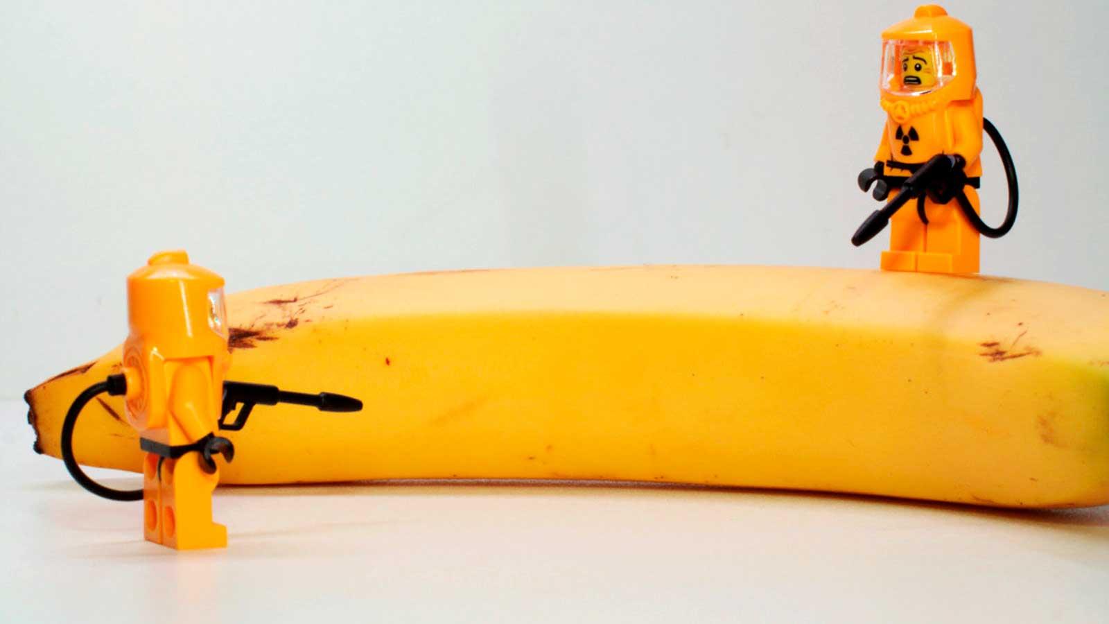 ¿Cuántos plátanos necesitas comer para volverte radiactivo?