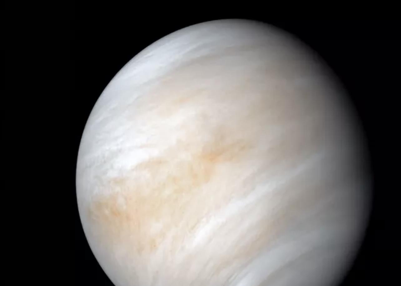 Buscando vida: Rocket Lab planea llegar a Venus en 2023