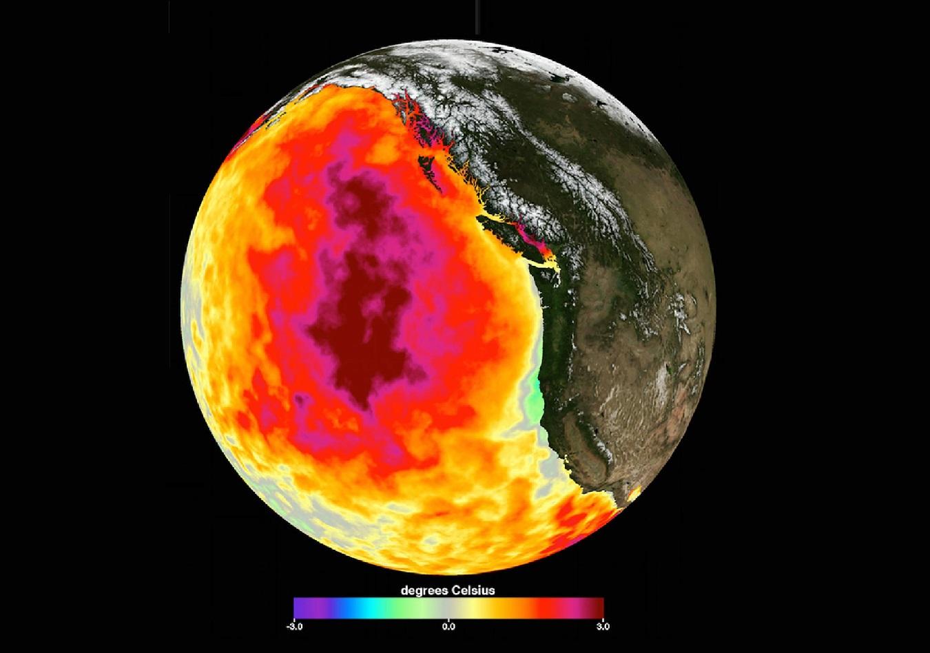 Las gigantescas masas de agua caliente de los océanos parecen ser causadas por los humanos