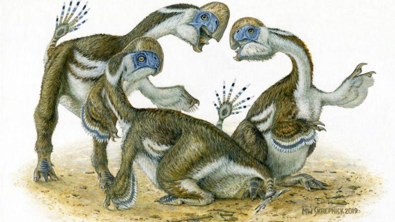 Paleontólogos descubren un dinosaurio emplumado, chimuelo y con solo dos dedos