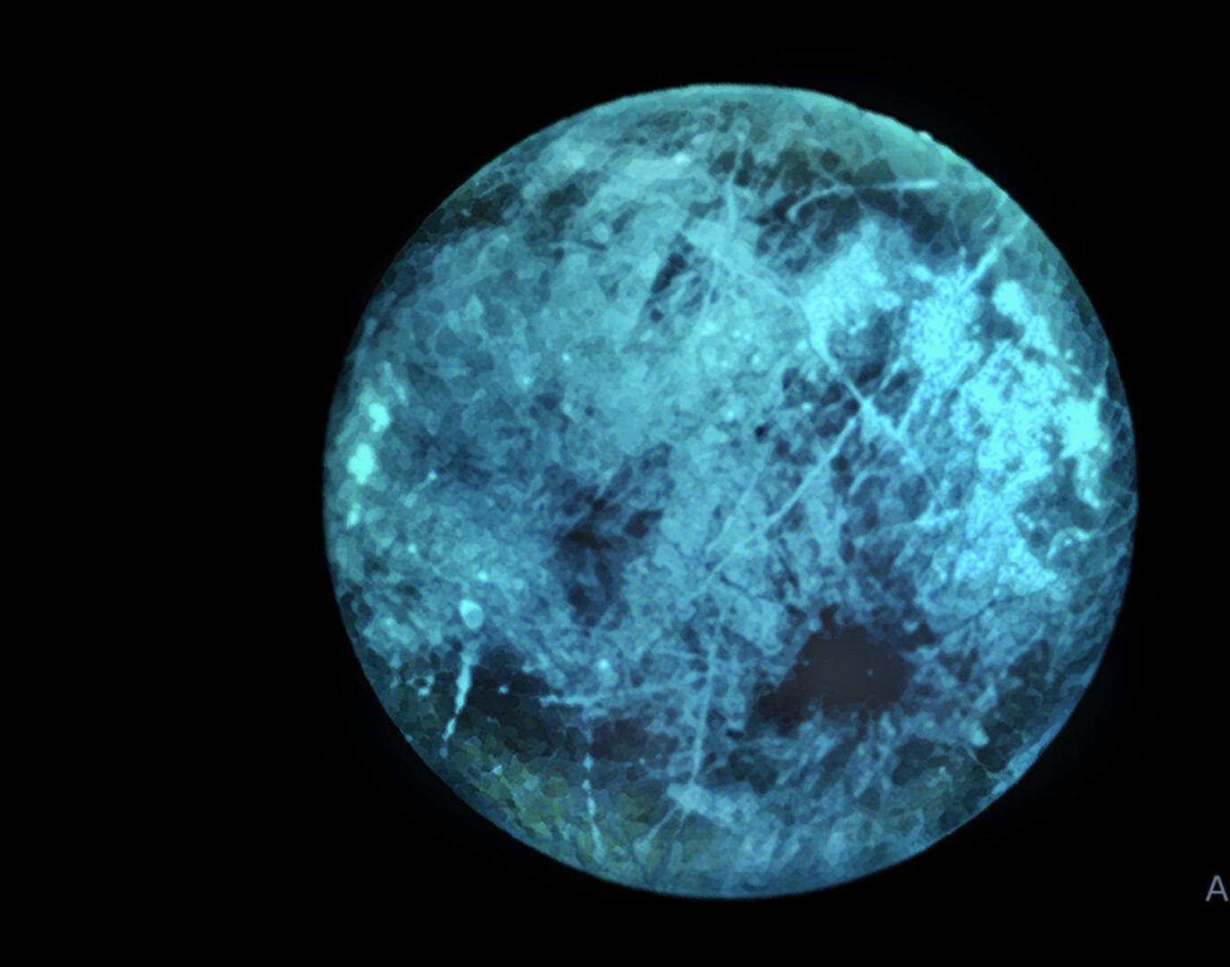 NASA predice que Europa, luna de Júpiter, podría brillar en la oscuridad