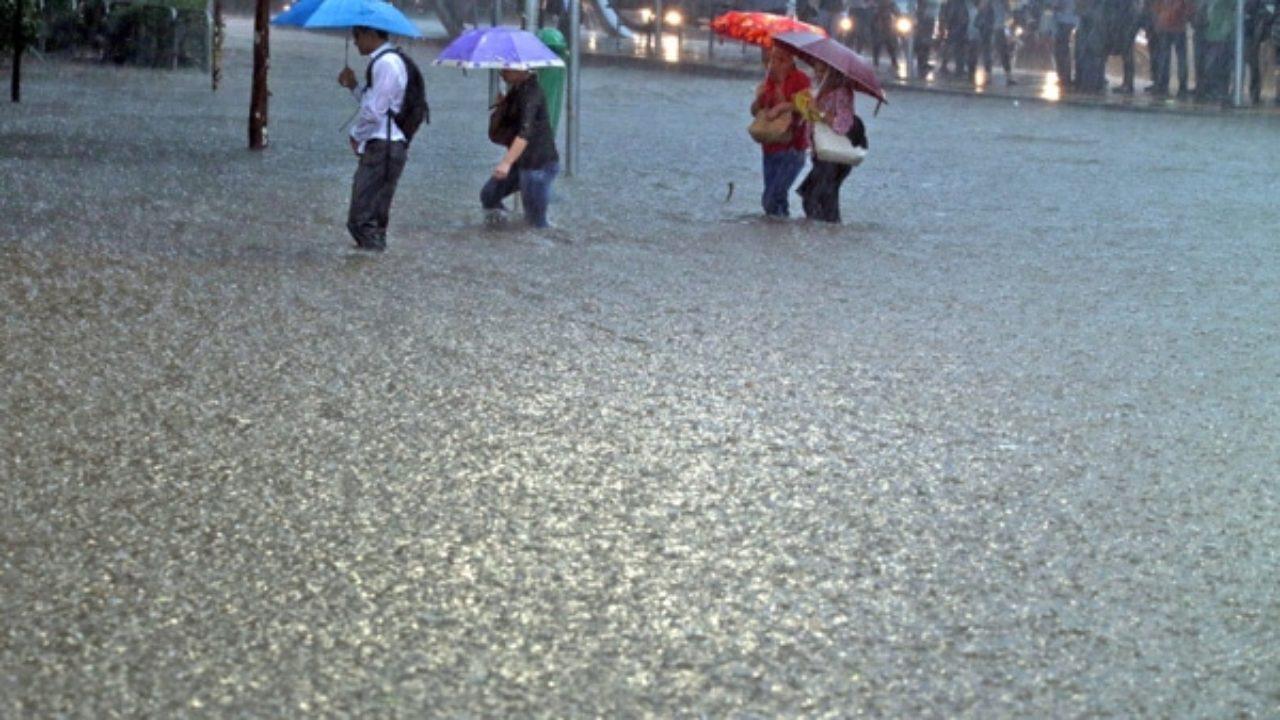 ¿Cómo es el lugar más lluvioso de la Tierra?
