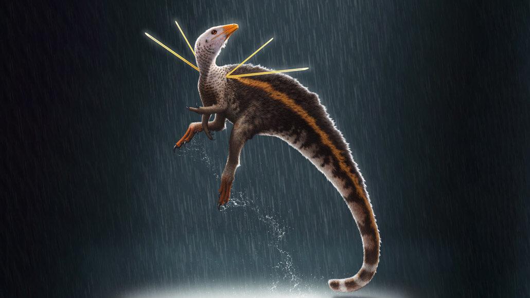 Este extraño dinosaurio brasileño tuvo una melena de plumas y un par de espinas en sus hombros