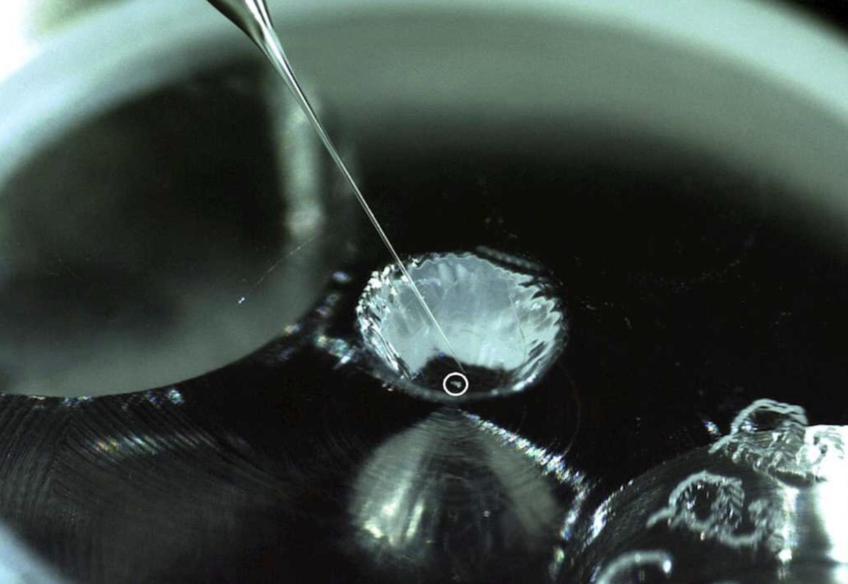 Encuentran material orgánico esencial para la vida en la superficie de un asteroide, por primera vez