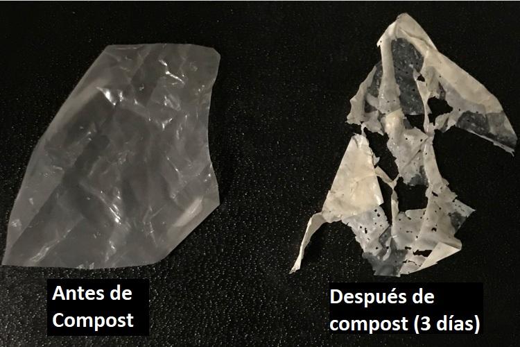 Nueva técnica podría convertir los plásticos en abono casero