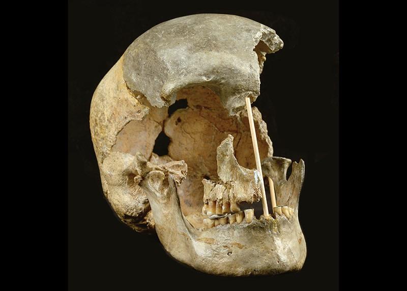 El ADN más antiguo de un Homo sapiens revela una reciente ascendencia neandertal