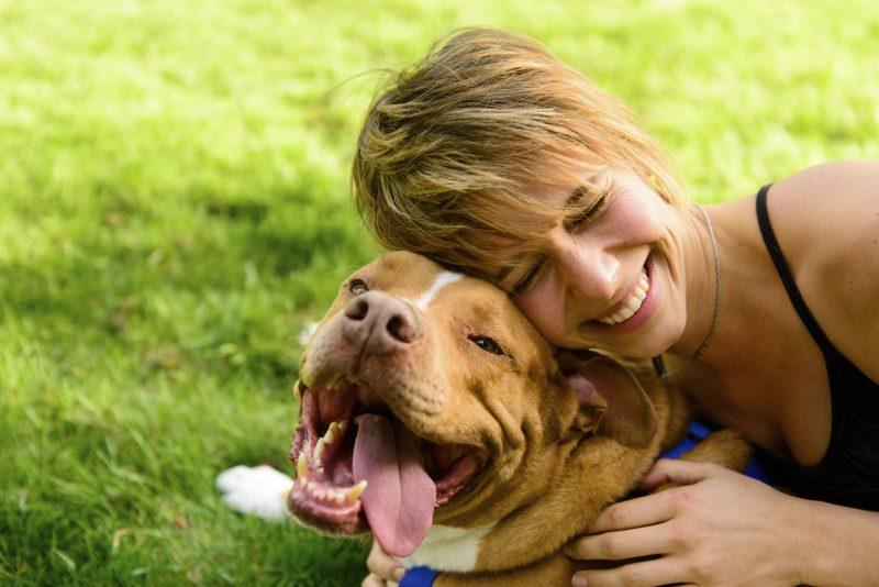 Los niveles de estrés de tu perro están relacionados con tu personalidad