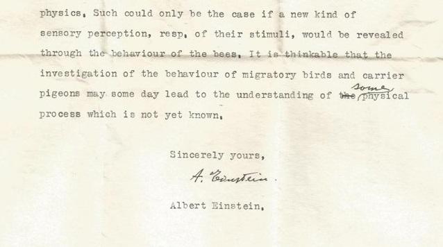 """Einstein predijo el descubrimiento de los """"supersentidos"""" animales, revela una carta perdida"""