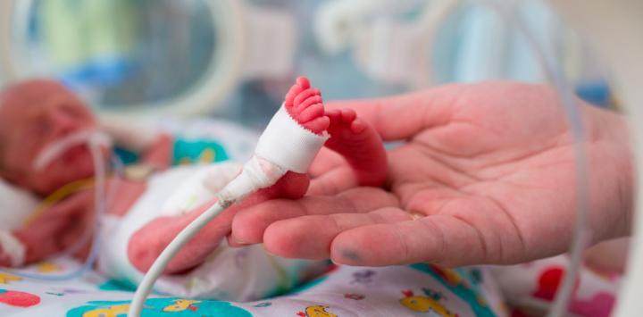 Un prolongado estudio revela que los bebés prematuros varones envejecen más rápido
