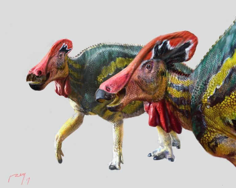 Tlatolophus galorum: el dinosaurio mexicano que se comunicaba a través de su cresta
