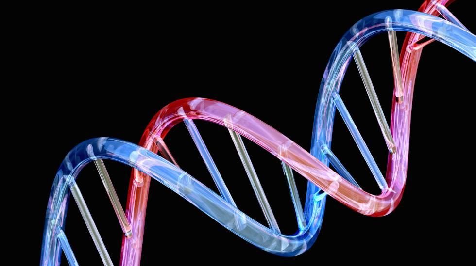Esta podría ser la primera secuenciación completa del genoma humano
