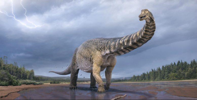 Presentando al «Titán del Sur», el dinosaurio más grande descubierto en Australia