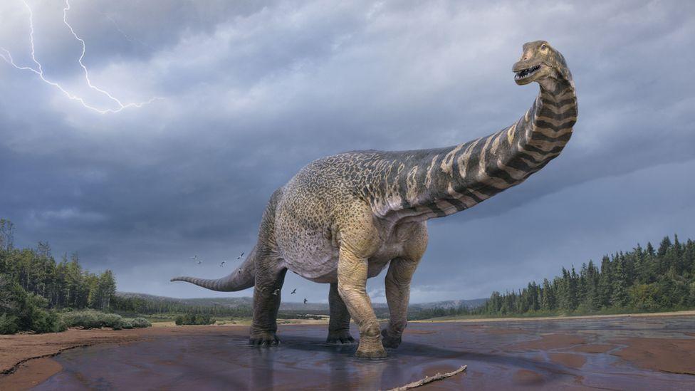 ¿Los dinosaurios se habrían vuelto aún más grandes si no hubiesen sido eliminados?