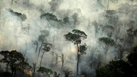 La Amazonía ahora emite más CO2 del que absorbe, a causa de la deforestación y el cambio climático