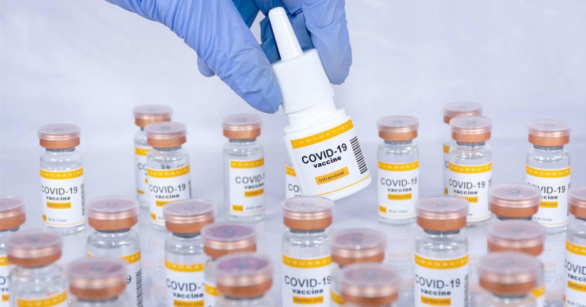 Una vacuna nasal en aerosol puede reducir la severidad del Covid-19 y bloquear la transmisión del virus