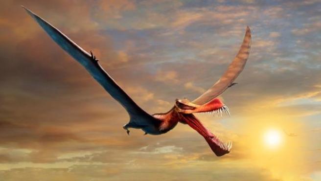 El reptil volador más grande de Australia era un «dragón de la vida real»